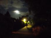 Mind_the_moon___.JPG